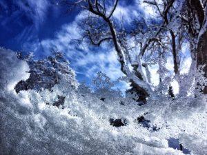 Snow Flickr User Natalia Medd-2
